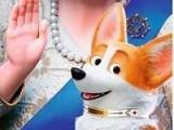 《女王的柯基》HD超清完整版免费观看中字