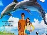海豚伯尼2 高清完整版未删减中文字幕